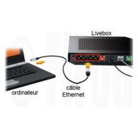 Cordons Ethernet RJ45 de catégorie 6 de couleur blanche pour une liaison filaire entre votre et votre ordinateur afin de vous affranchir du WIFI ou CPL et de leurs pollutions hyperfréquences.